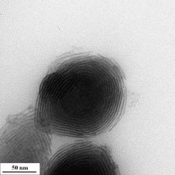 particulagadolinio1