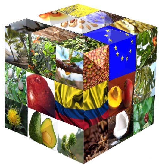 Cubo Natural Europa Colombia